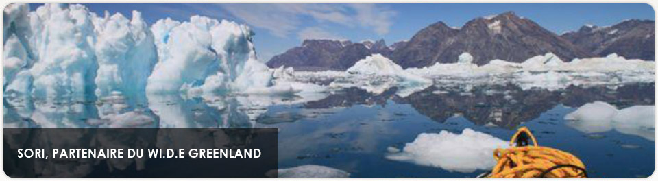 SORI: Wi.D.E Greenland Project Partner